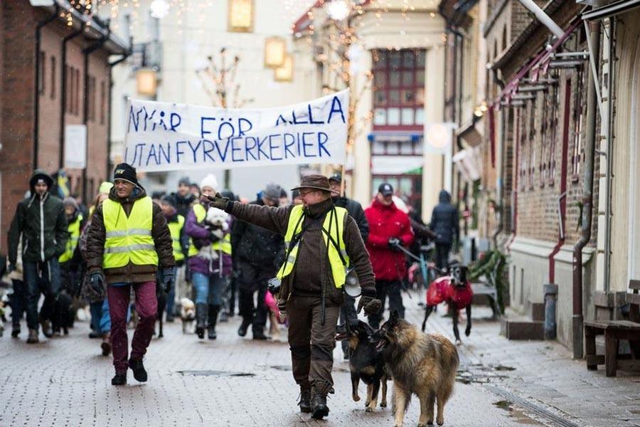 İsveç'te köpekli havai fişek protestosu