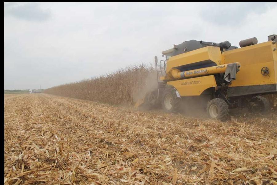 'Çiftçi, tarımsal desteklerin açıklanmasını bekliyor'