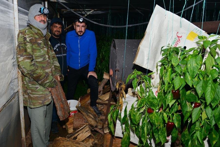 Antalya'da üreticiler 'don' nöbeti tuttu