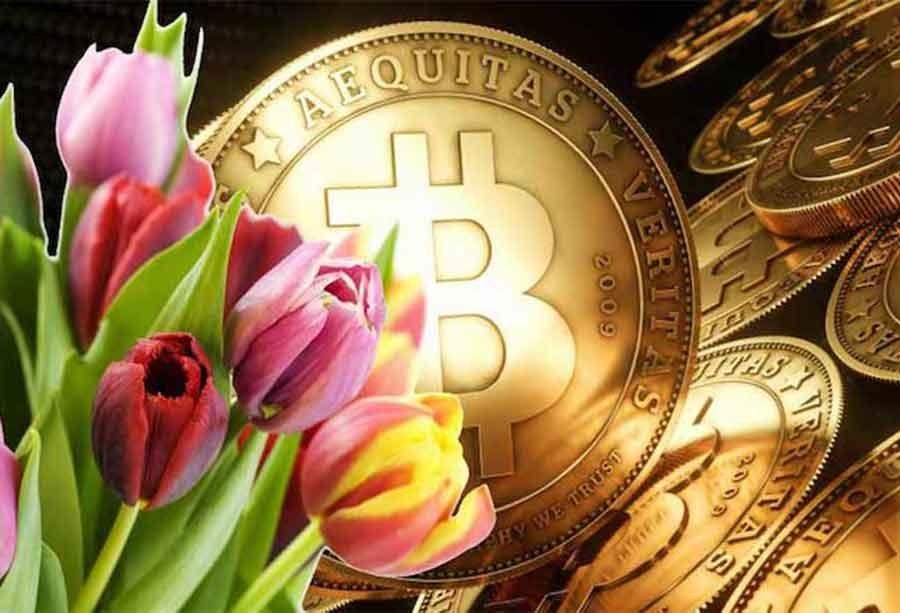 Bitcoin'i biliyoruz da lale çılgınlığı ne ola ki?