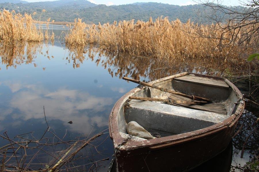 Azap Gölü'nün azabını tepeli pelikan dindirebilir mi?