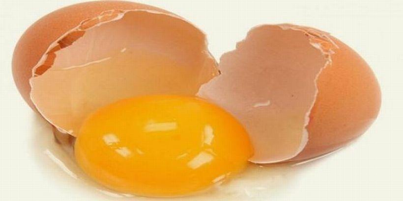 222 adet yumurta 17 kilo süt tükettik