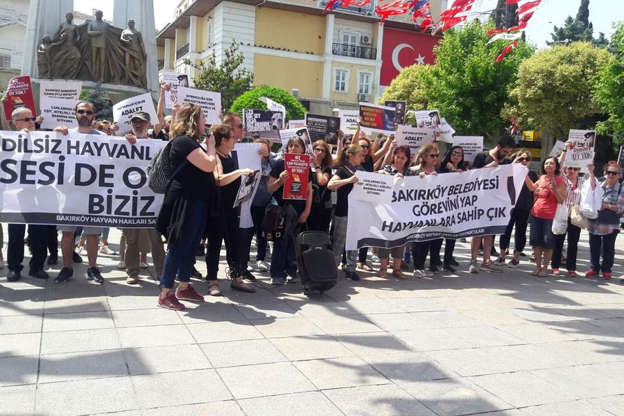 Bakırköy'de hayvan hakları eylemi: Onların oyu yok ama bizim var