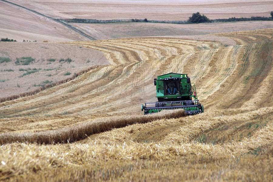 2020 bütçesi çiftçiden uzak: Hükümet kanuni desteğin yarısını bile vermeyecek