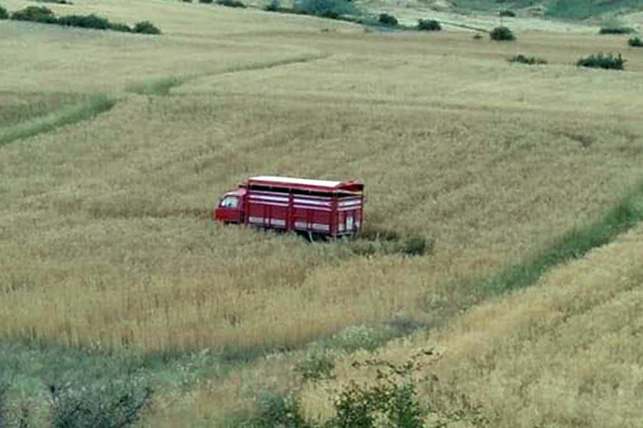 Tarım işçilerini taşıyan kamyonetin freni boşaldı, 17 kişi yaralandı