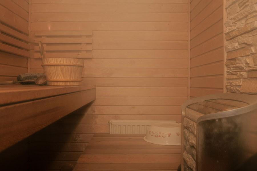 'Sauna, kültür mirası listesine alınmalı'