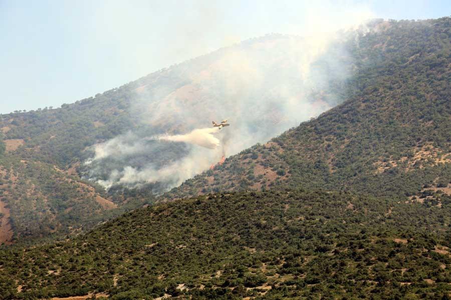 Dersim'de 3 gündür süren orman yangınına uçakla müdahale edildi