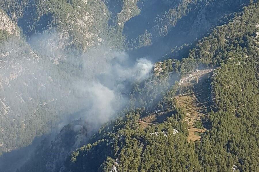 Köyceğiz'de orman yangını: 2,5 hektarlık alan zarar gördü
