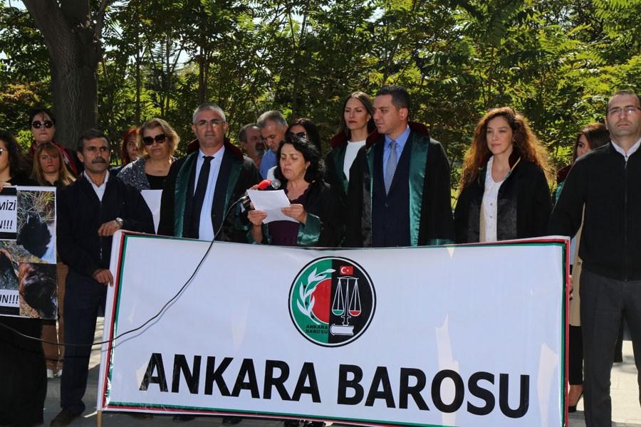Ankara Barosu: Devlet, hayvan cinayetlerine 'dur' demeli