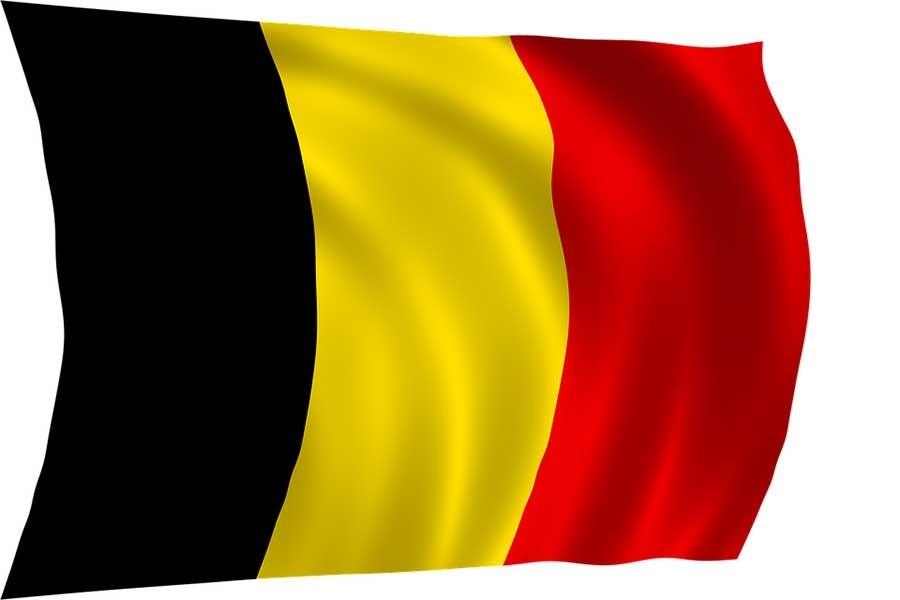 'Belçika seçimlerinde AKP müdahalesi' tartışması