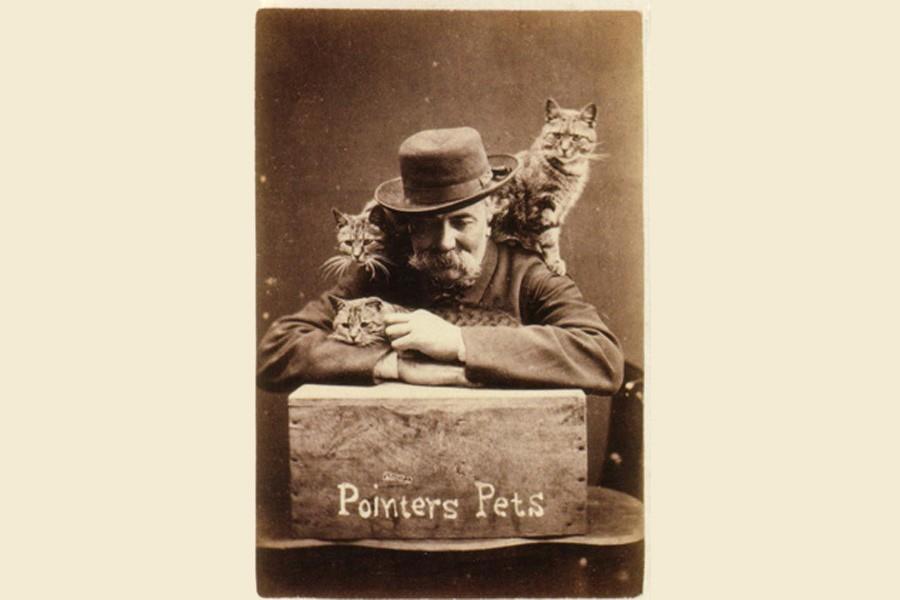 Harry Pointer kedi capslerini 150 yıl önce kullandı
