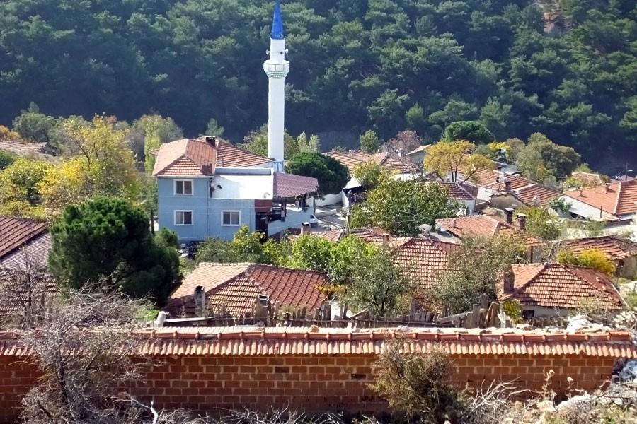 Burhaniye'de kuduz alarmı: Bir mahalle 2 ay süreyle karatinaya alındı