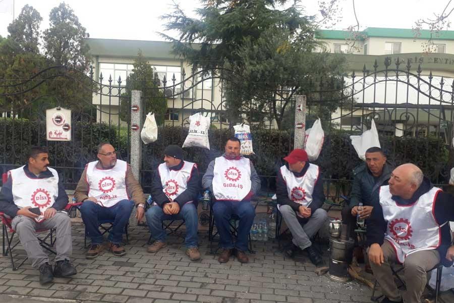TARİŞ işçileri: Güç aldıkları üreticilerin çocuklarını işten atıyorlar