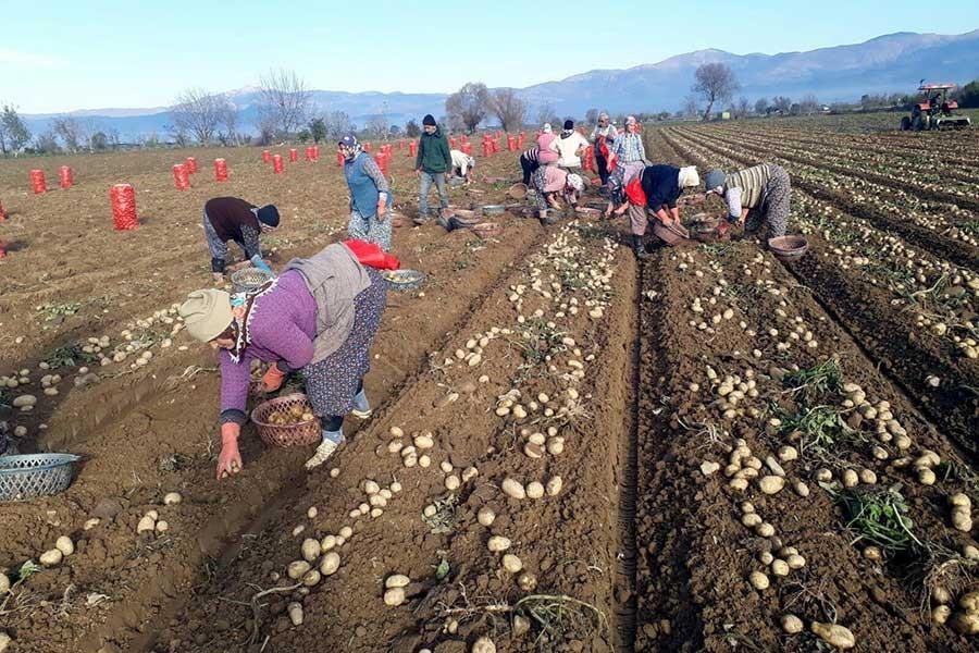 Çiftçiler Günü | 'İthalattan vazgeçin, maliyetleri makul düzeye çekin'