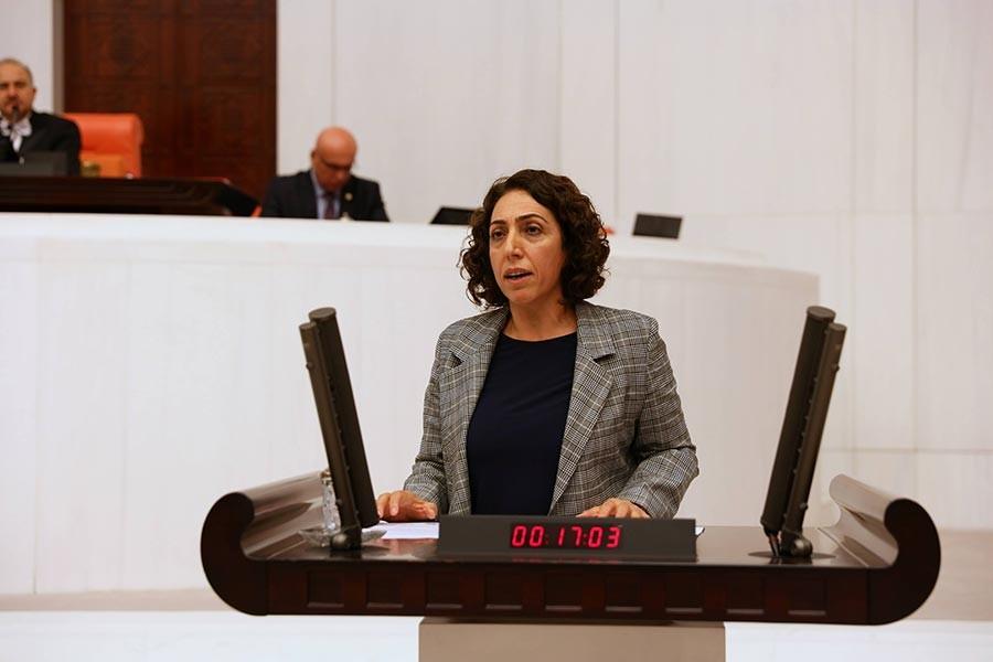 HDP'li 2 vekil hakkında 'Cumhurbaşkanına hakaret' gerekçesiyle soruşturma başlatıldı