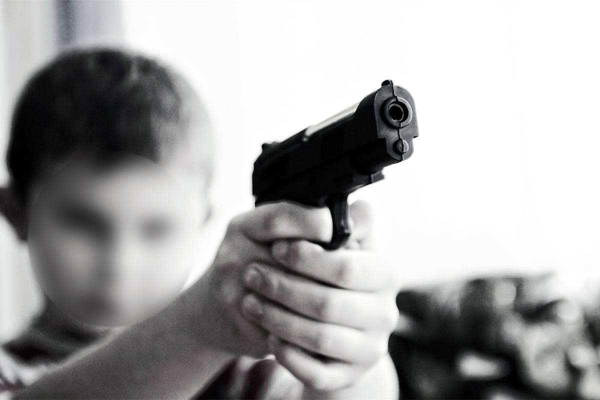 Gürer: Artan bireysel silahlanmanın önüne geçilmeli