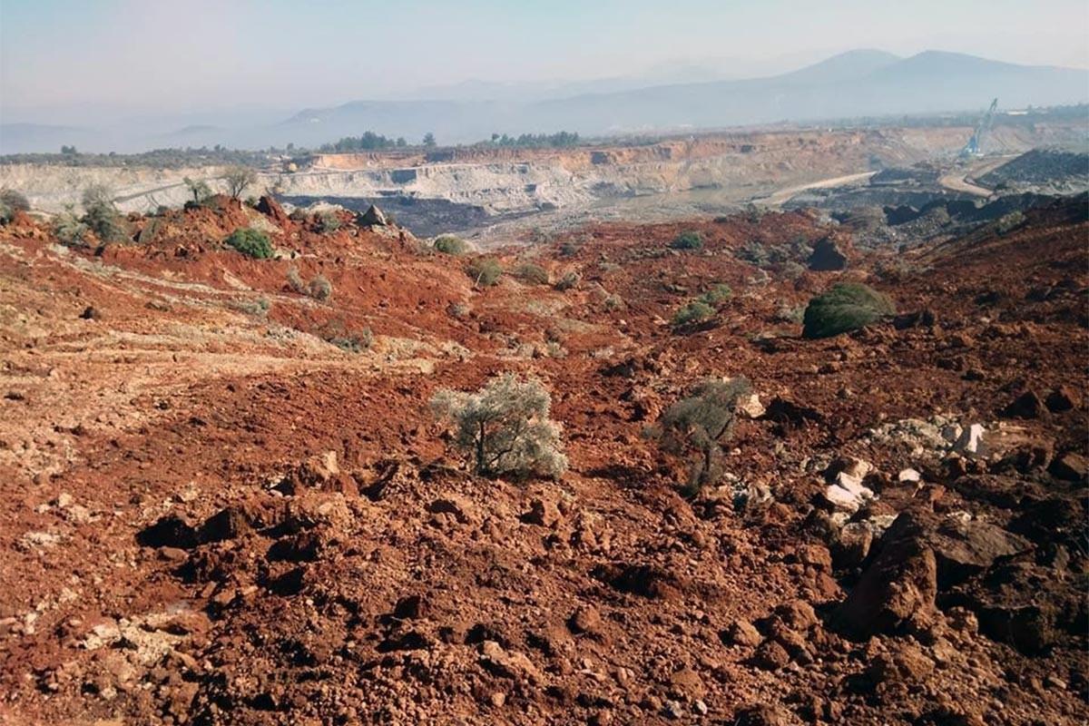 Kömür ocağına komşu yüzlerce zeytin ağacı heyelanla yok oldu