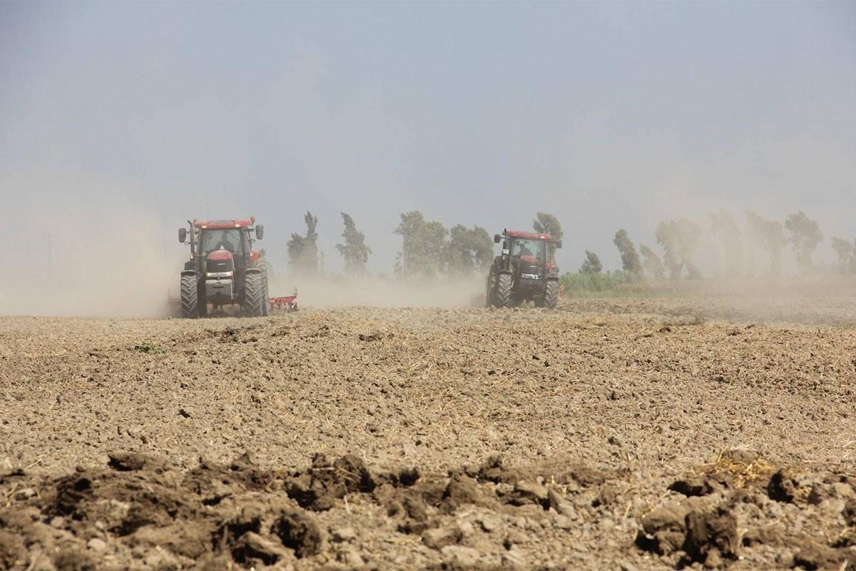 Tarımda üretici fiyat endeksi yüzde 19,6 oldu
