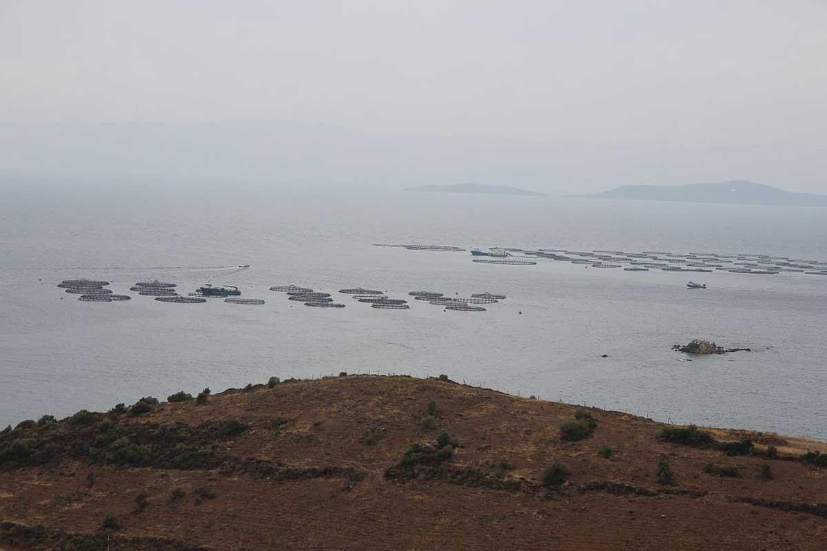 Karaburun'da Özel Çevre Koruma Alanı'nda balık çiftliğine izin verildi