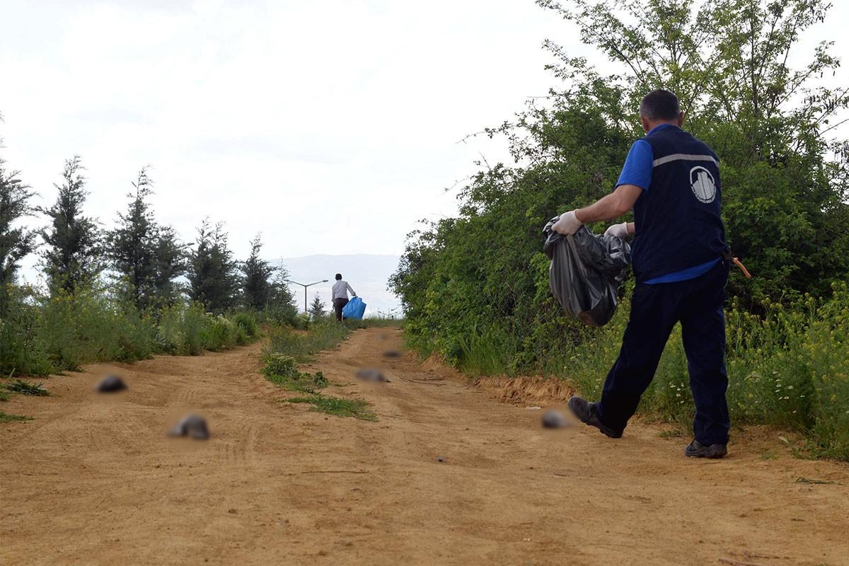 Ankara'da Güney Amerika tavşanı olarak bilinen 21 çinçilla ölü bulundu