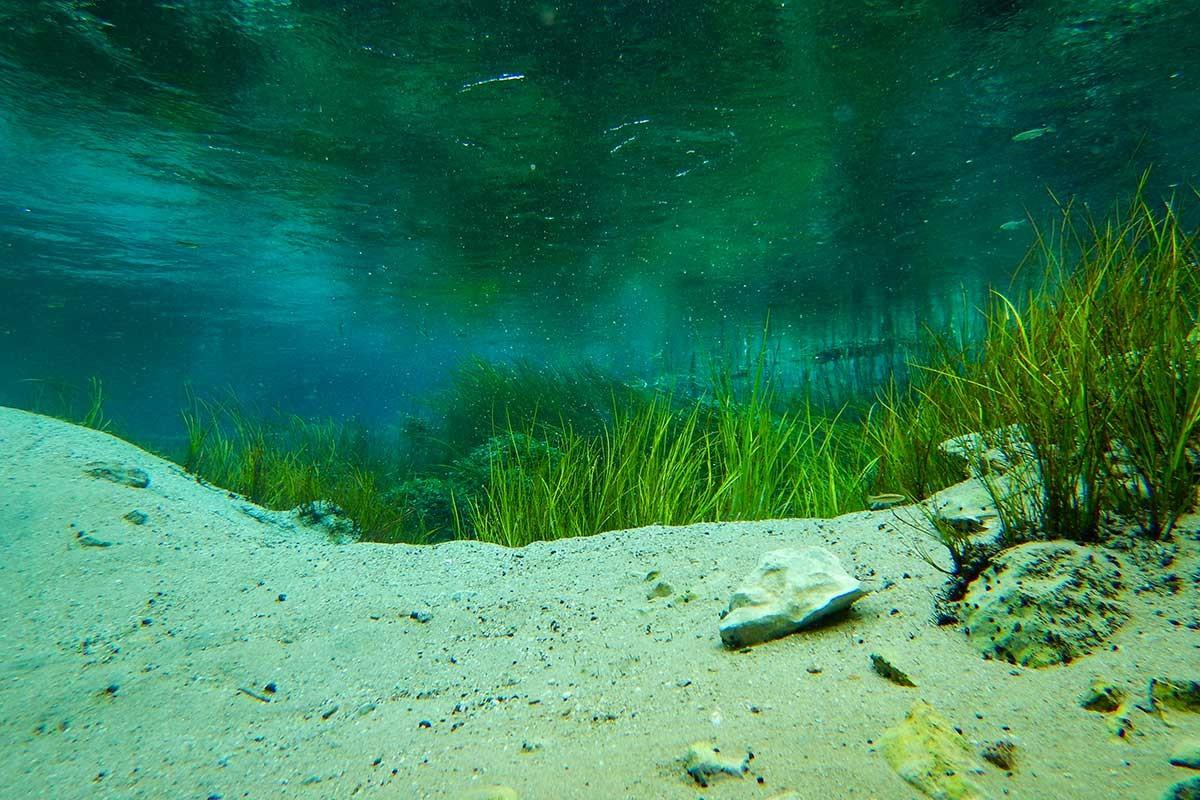Sakarya Nehri'nin doğuşuna şahit olmak