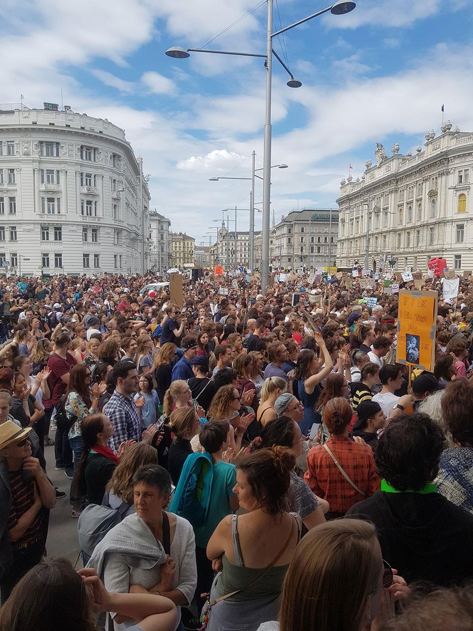 Viyana iklim eylemi