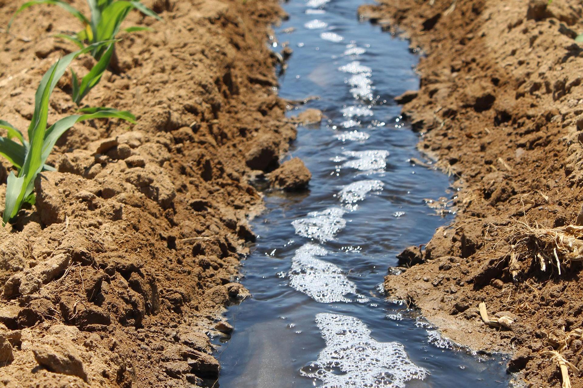 Çiftçilerden Küçük Menderes'te kirlilik tepkisi