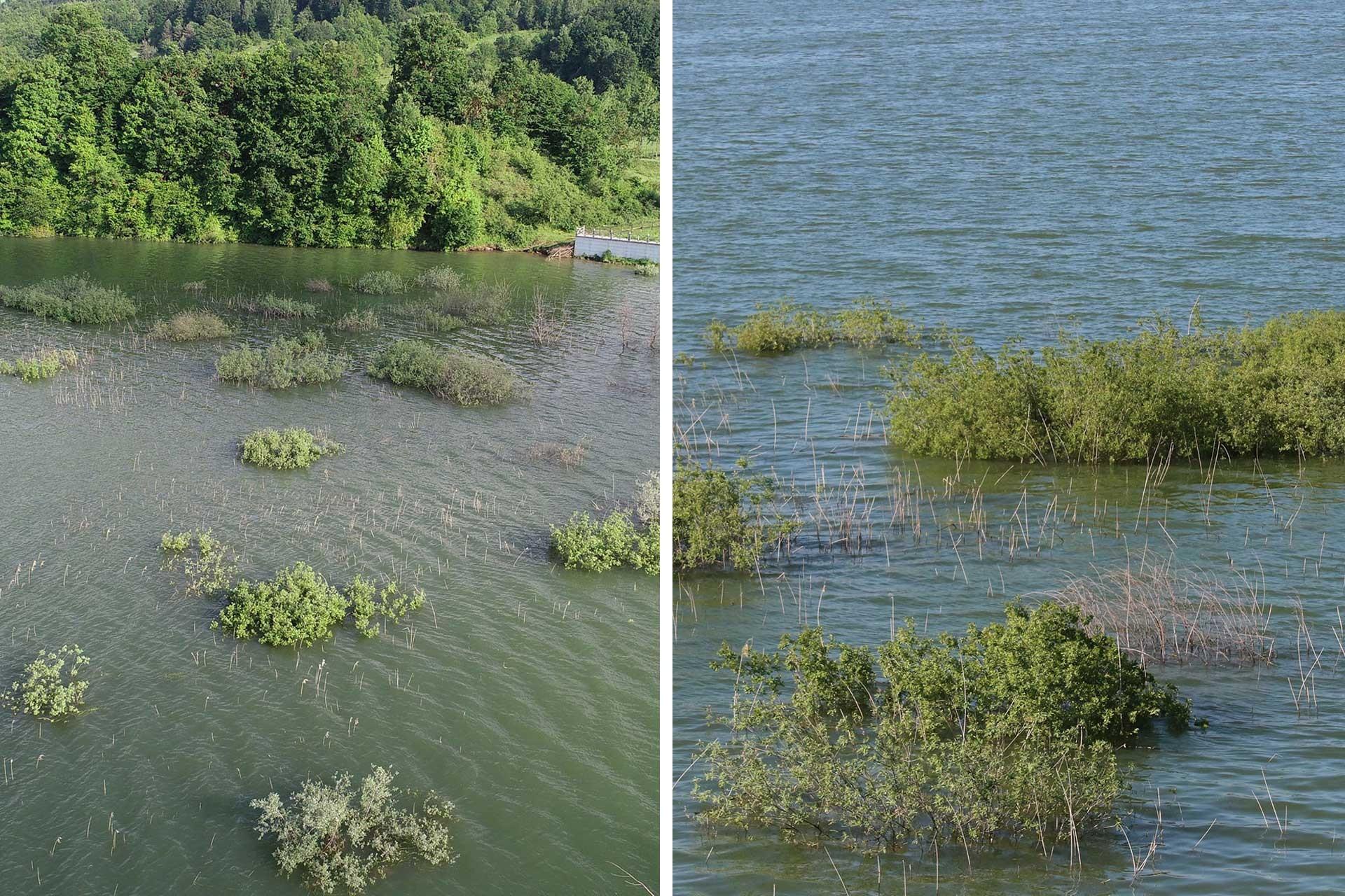 Ladik Gölü'nde yüzen adalar su altında kaldı
