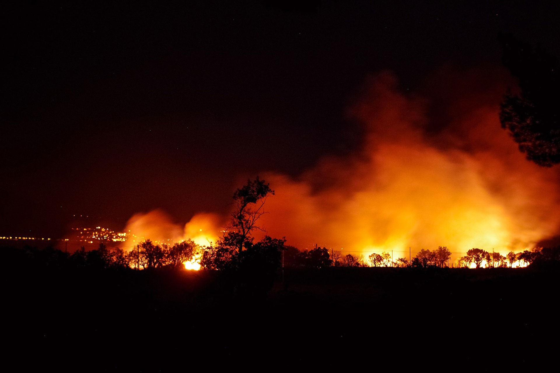 Ekoloji Birliği uyardı: Orman yangınlarına göz yummayacağız