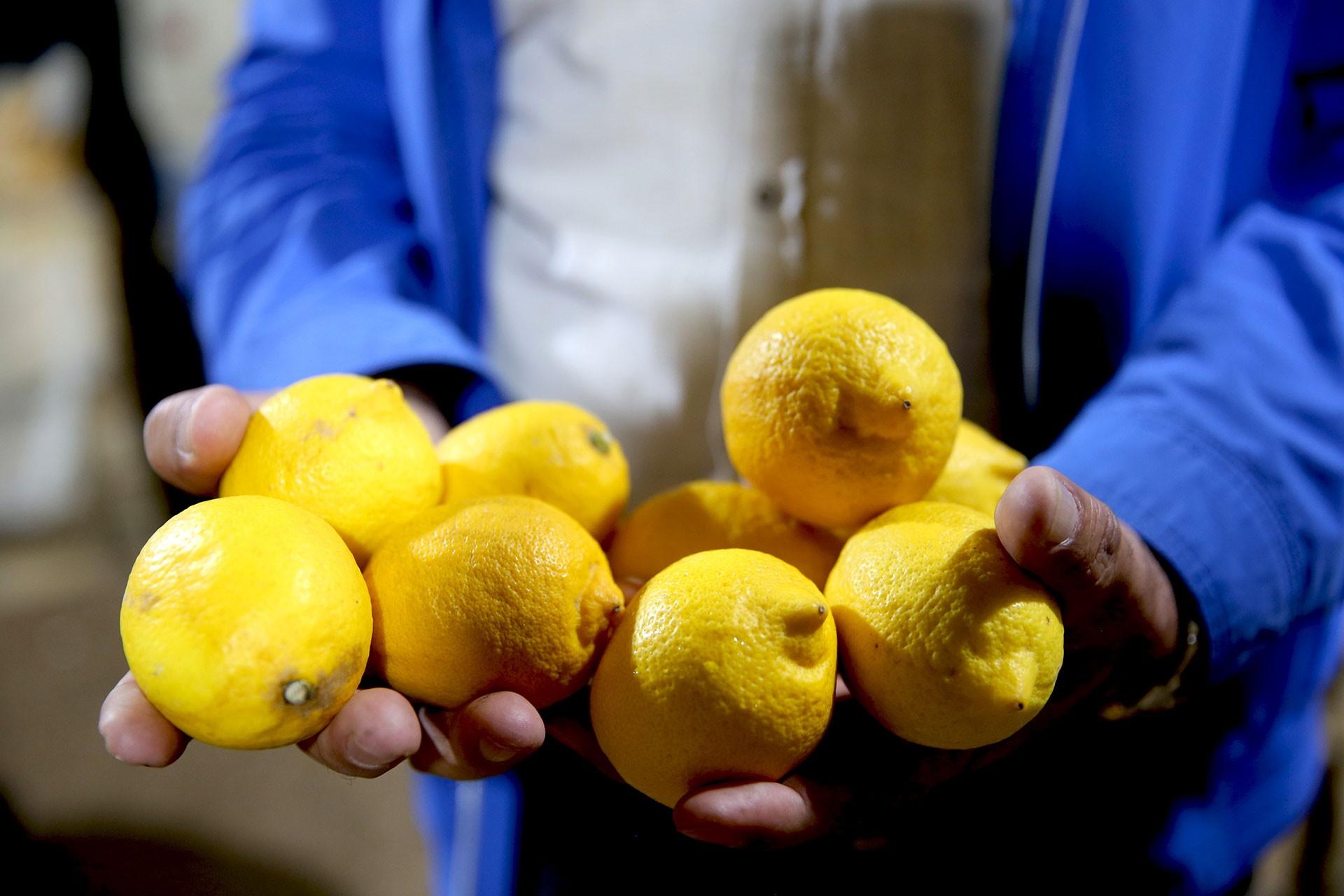 Kapadokya'da depolanan limon