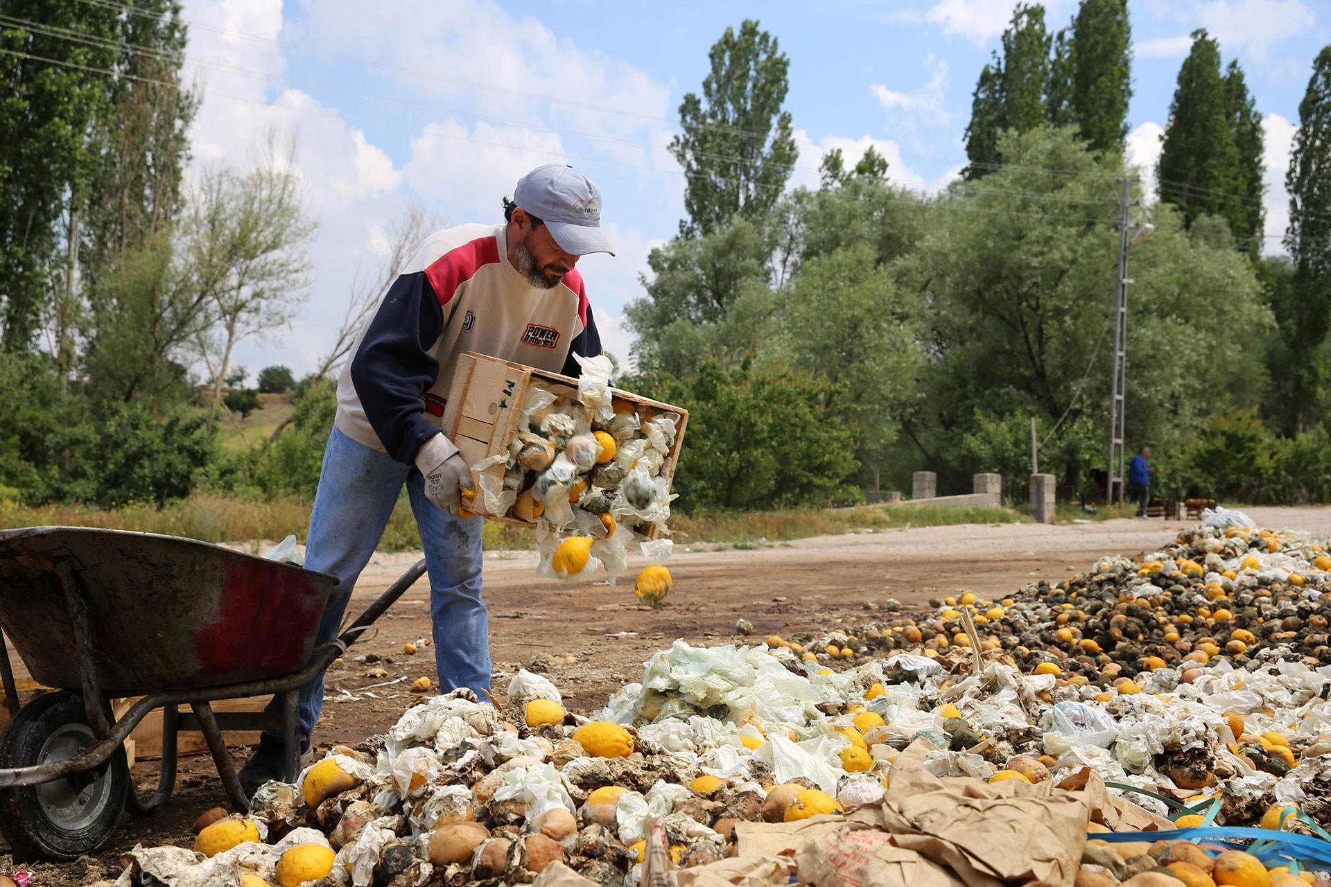 Kapadokya'da depolanan limonlarda çürüme