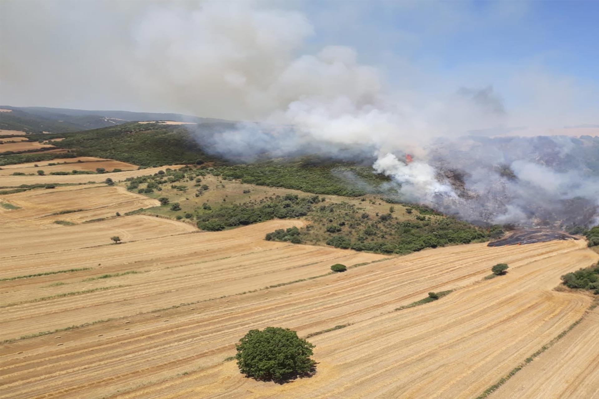 Gelibolu'da ziraat alanında başlayan yangın ormana sıçradı
