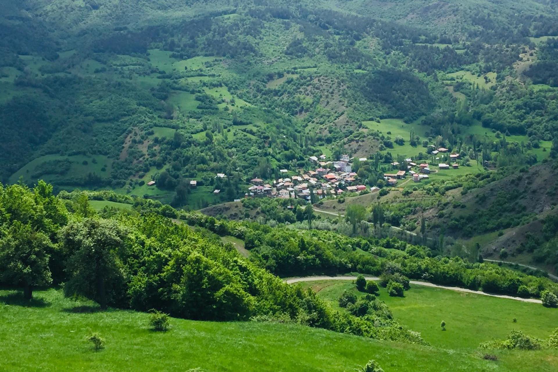 Sivas Beykonağı köyünde mermer ocağına tepki: Havamızı kirletecekler