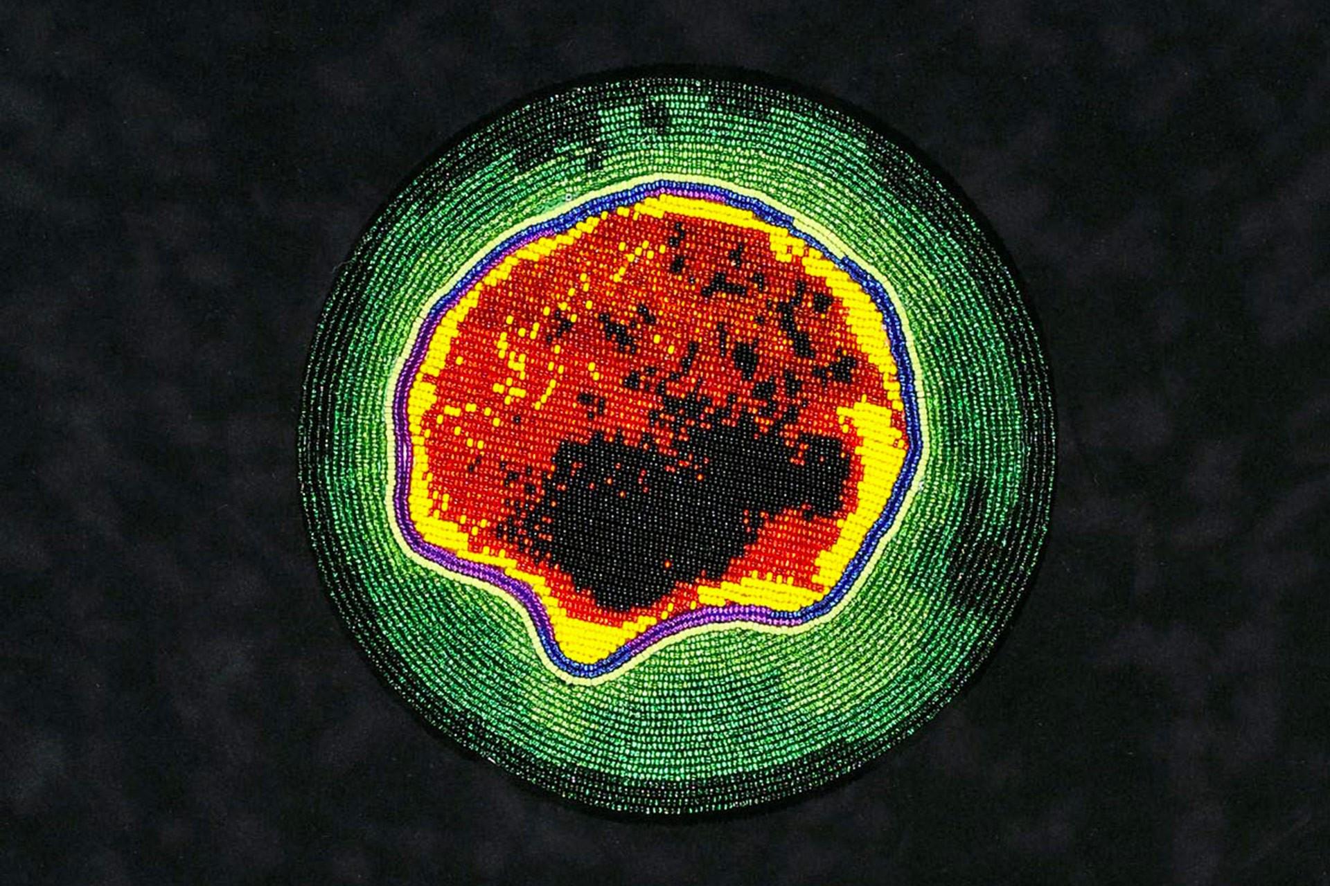Boncukla tasvir edilen virüsler