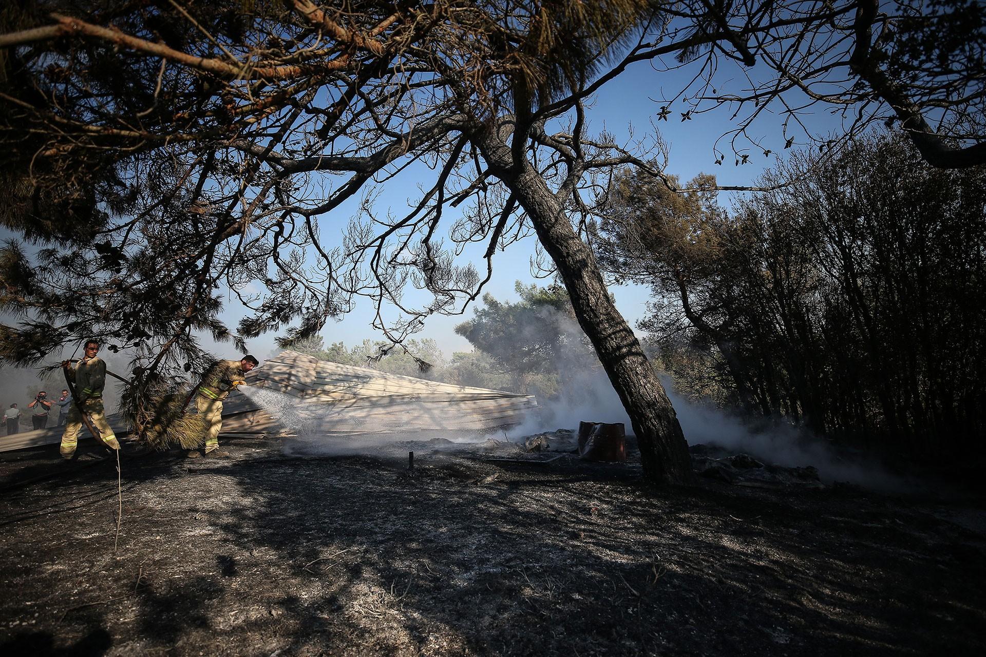 Çanakkale Eceabat'taki orman yangını kontrol altına alındı