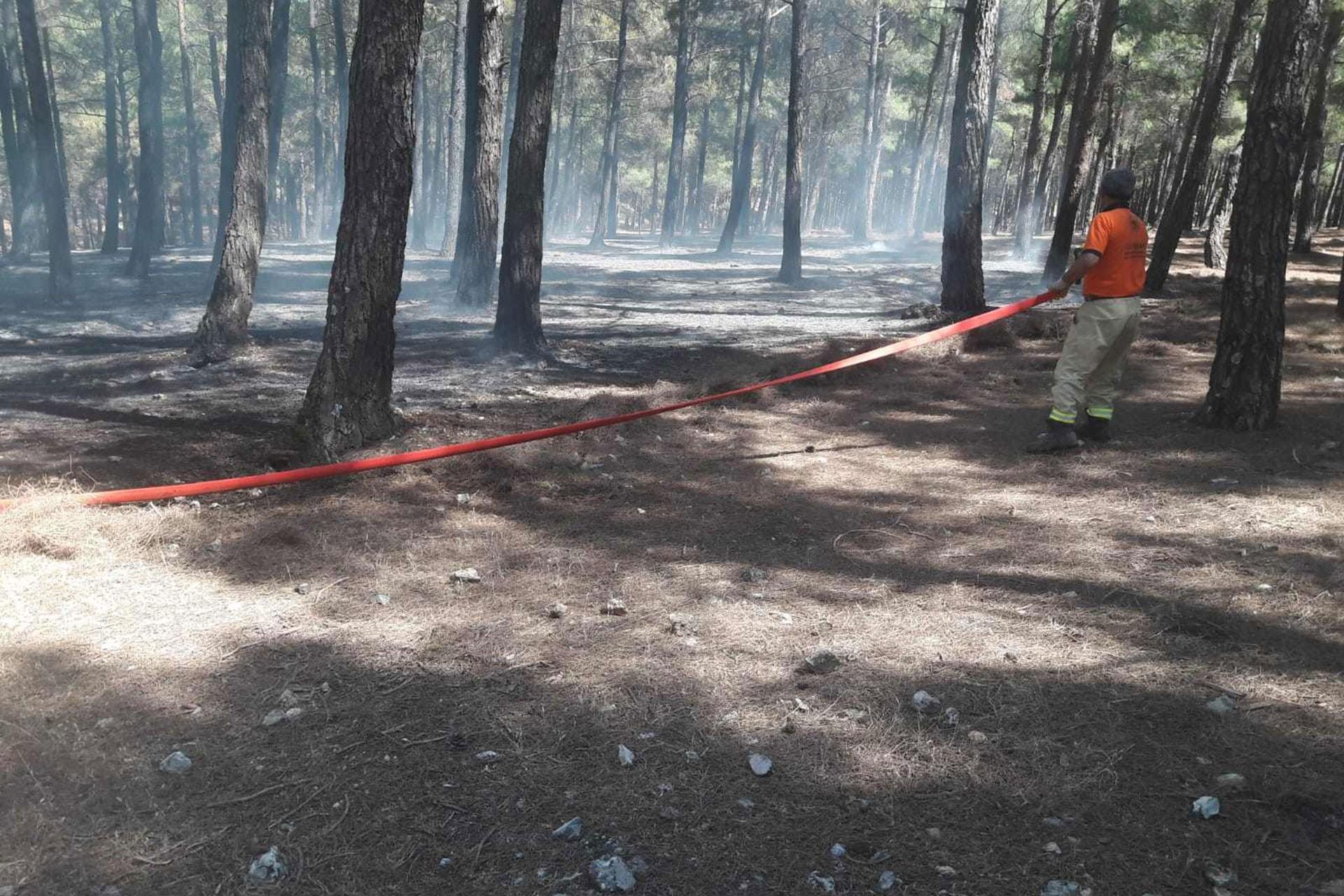 Maraş'ta piknik ateşi orman yangınına yol açtı