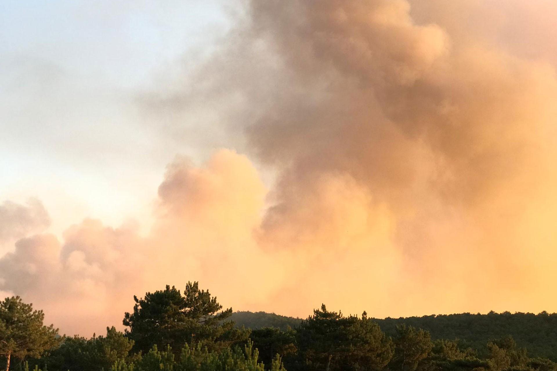 Eskişehir'de orman yangını: 8 kişi dumandan etkilendi