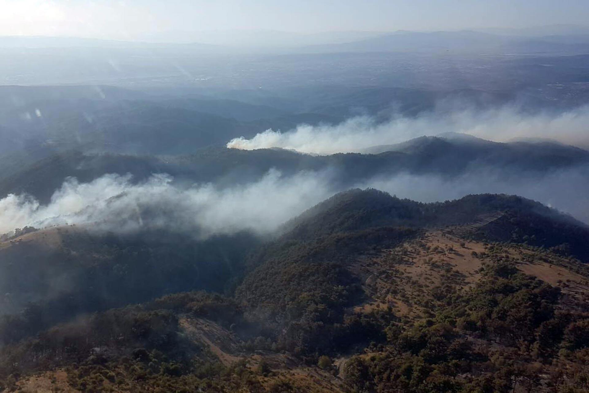 İzmir'den orman tepkisi: Yanan alanların imara açılmaması için mücadele edeceğiz