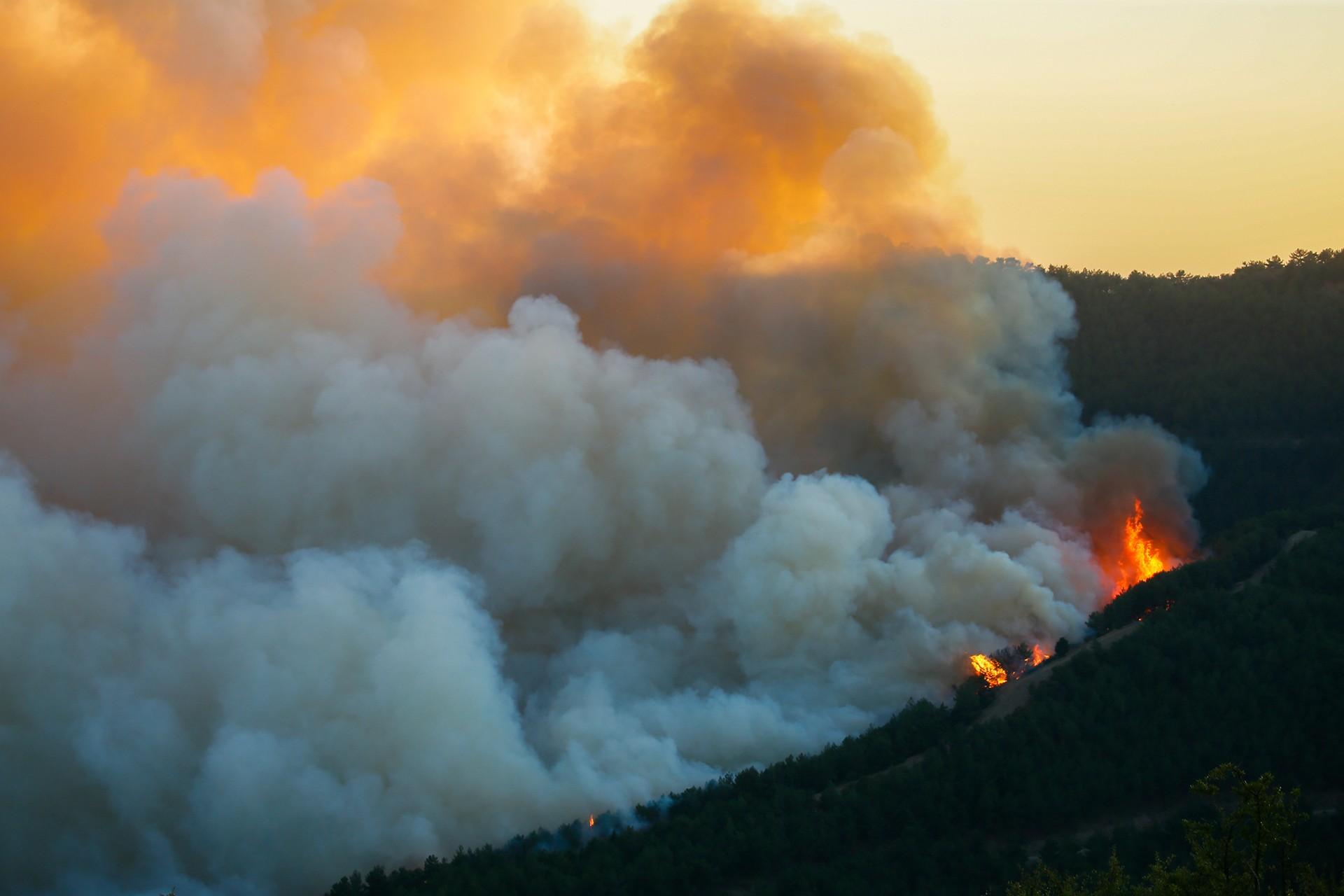 İzmir Karabağlar'daki orman yangını 3. gününde kontrol altına alındı