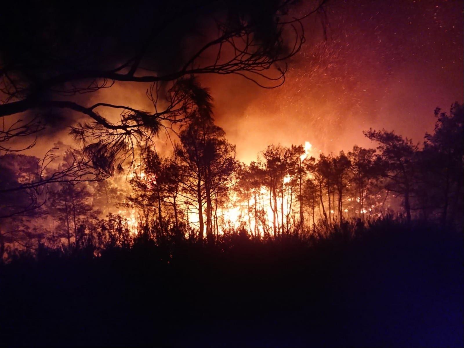 Muğla Ortaca'da çıkan orman yangını.
