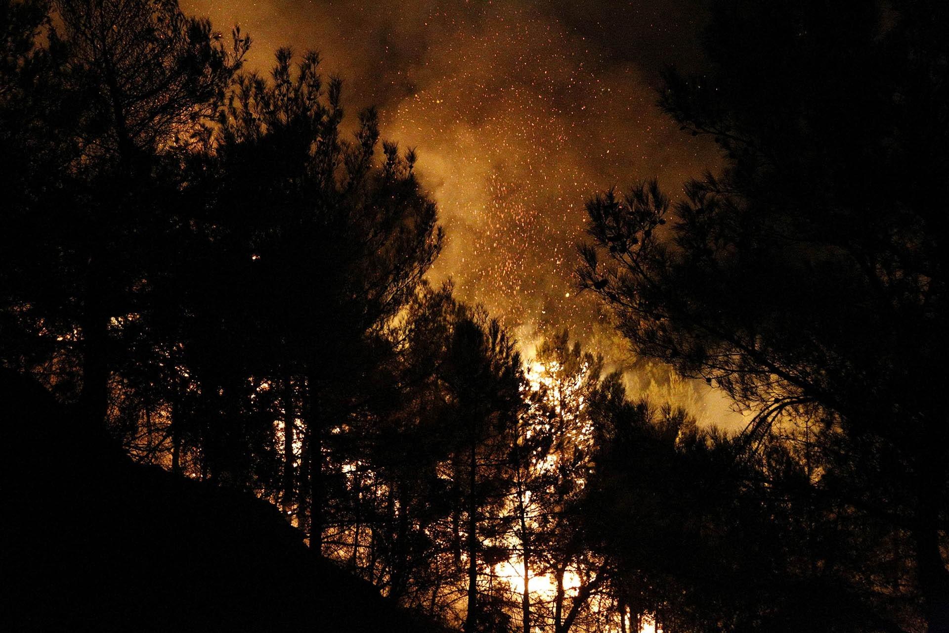 Hatay'da 25 farklı noktada orman yangını çıktı
