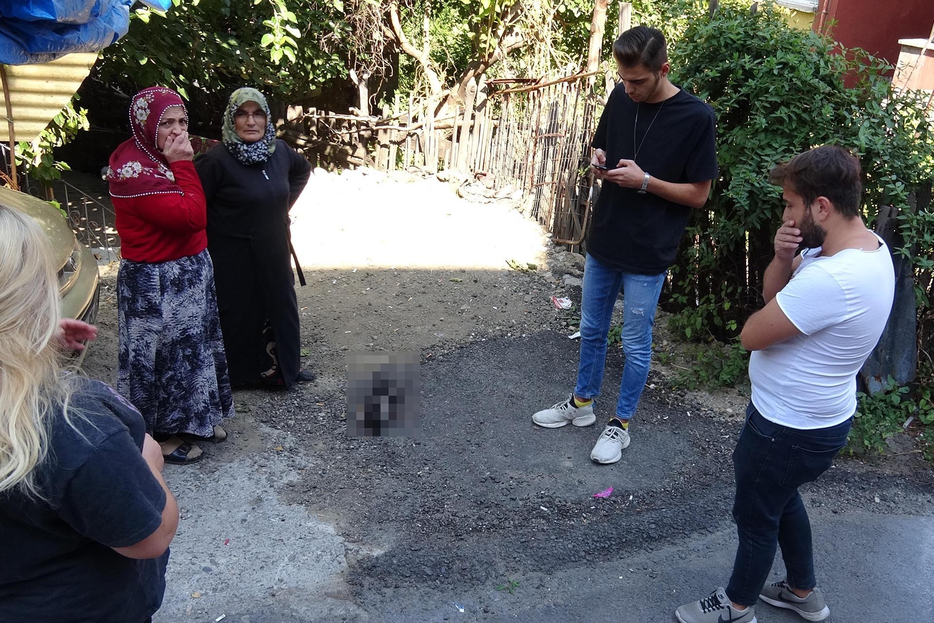 Karabük'te ayakları kesilmiş bir kedi ölü bulundu