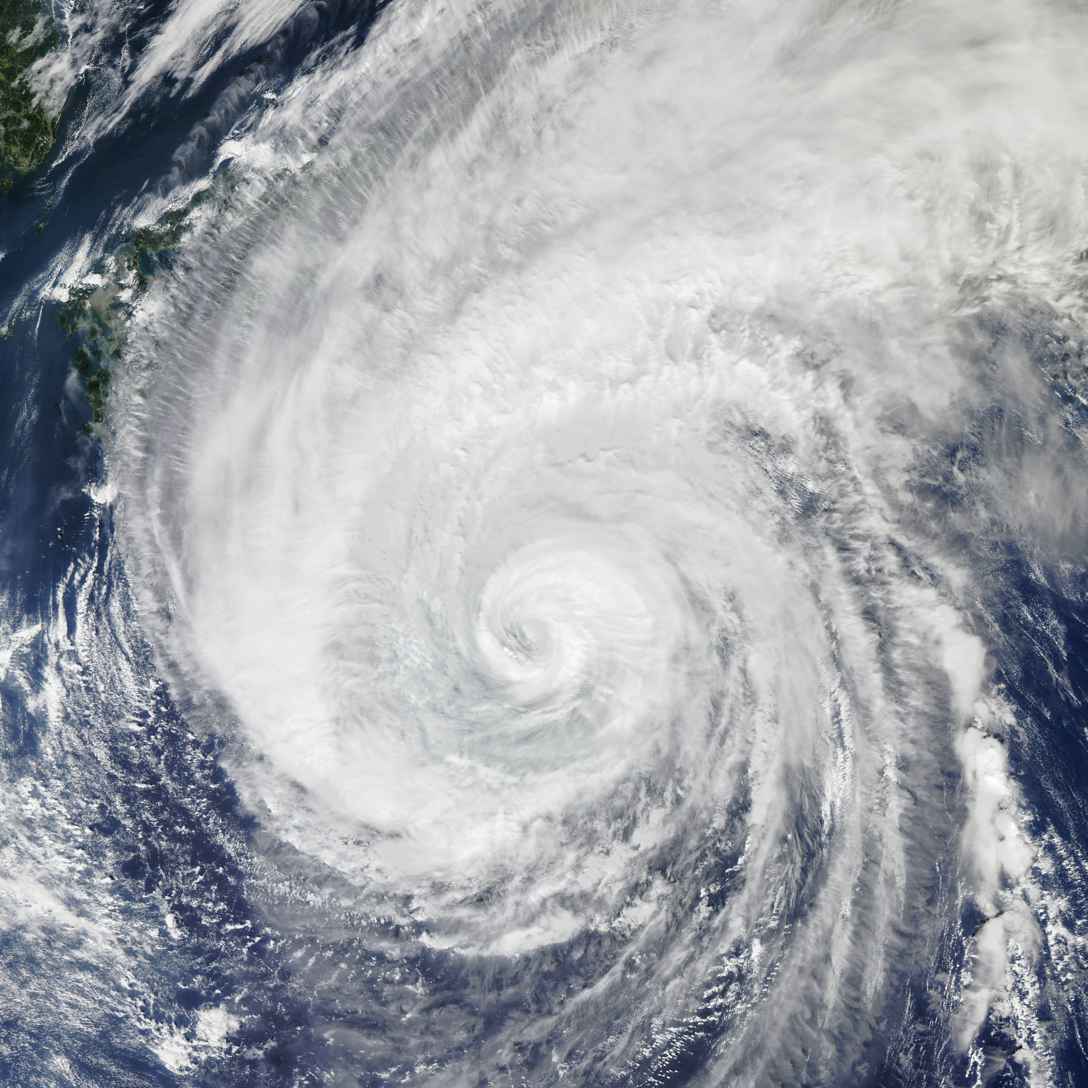 Hagibi tayfunu