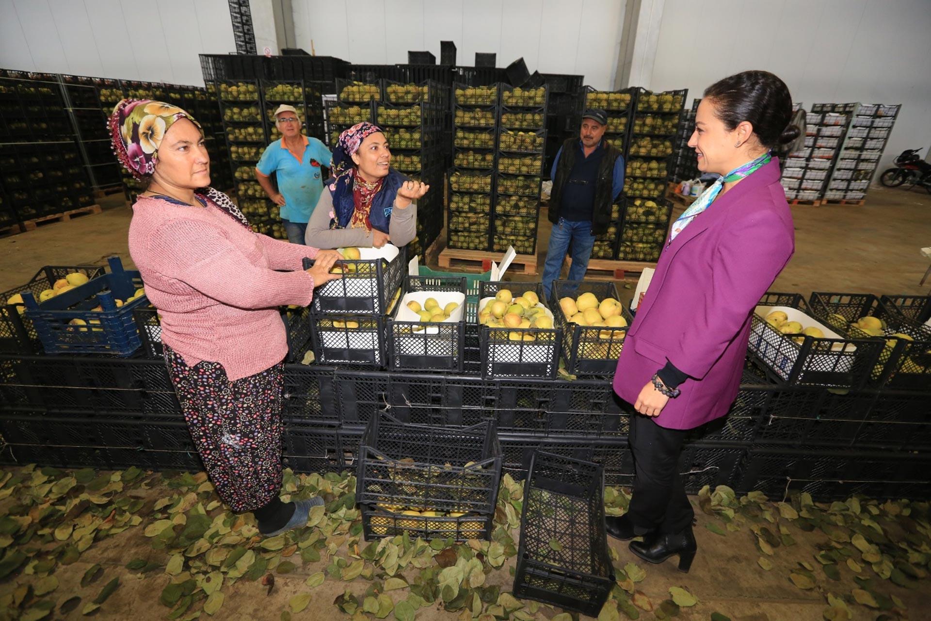 Selçuk Belediye Başkanı Filiz Ceritoğlu Sengel, tarım işçisi kadınlarla görüşürken