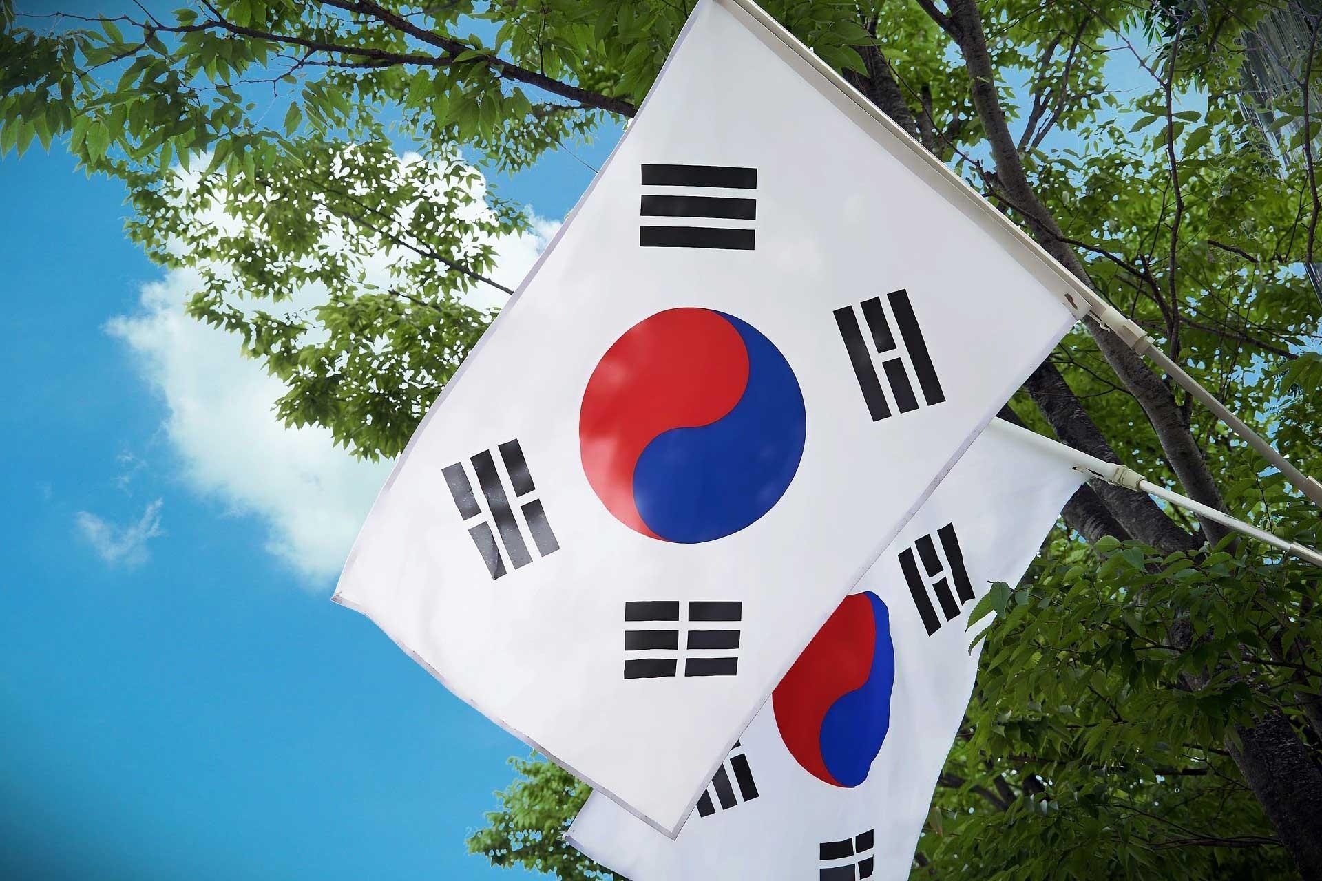 Ağaçla birlikte aynı karede görünen 2 Kore Cumhuriyeti bayrağı.