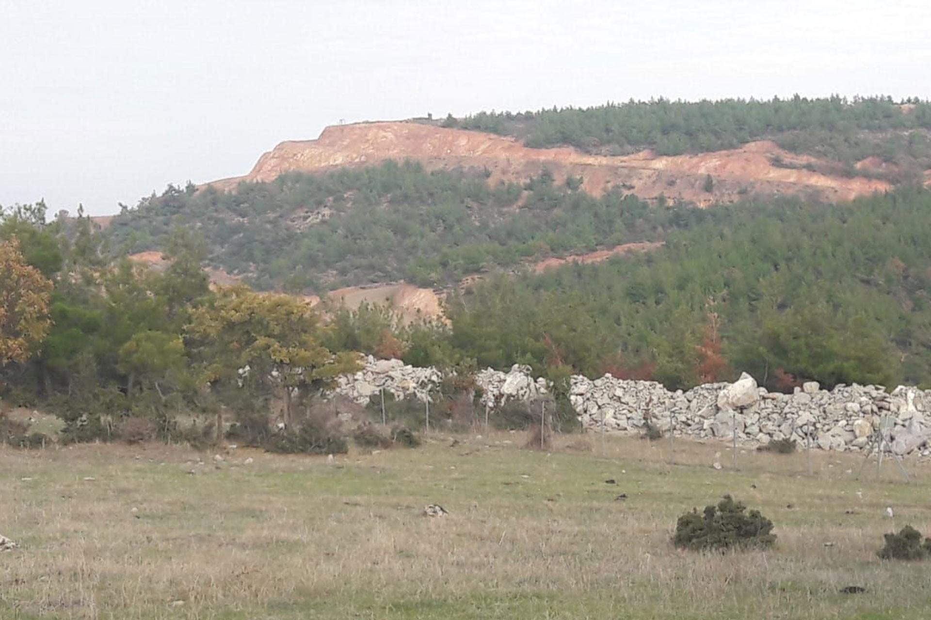 kaz dağı eteklerindeki doğa katliamı