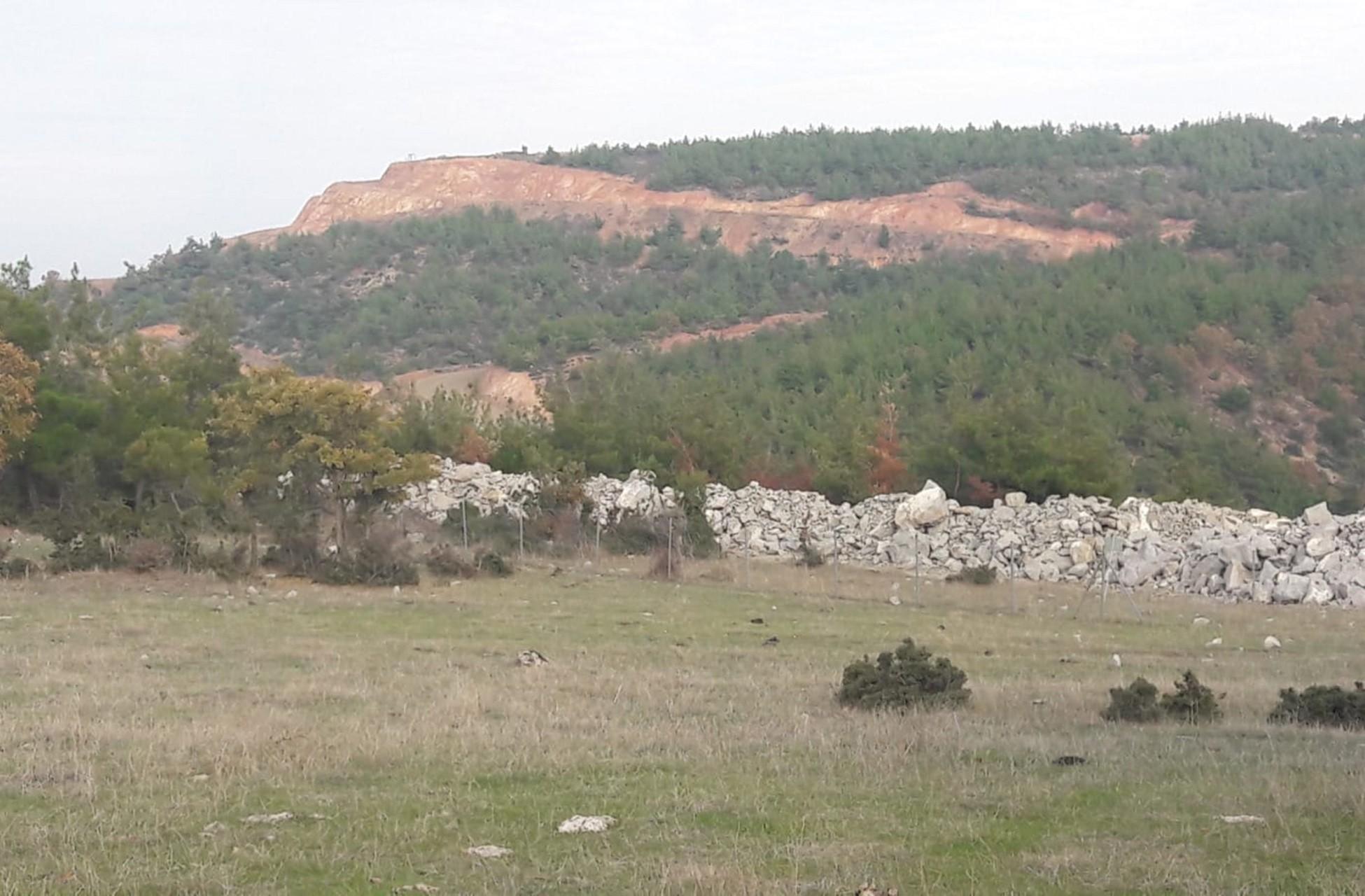 Kaz Dağları'nda ağaç katliamını görüntüsü.