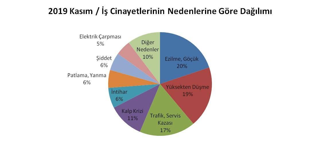 İş cinayetlerinin nedenlerine göre dağılımını gösteren grafik