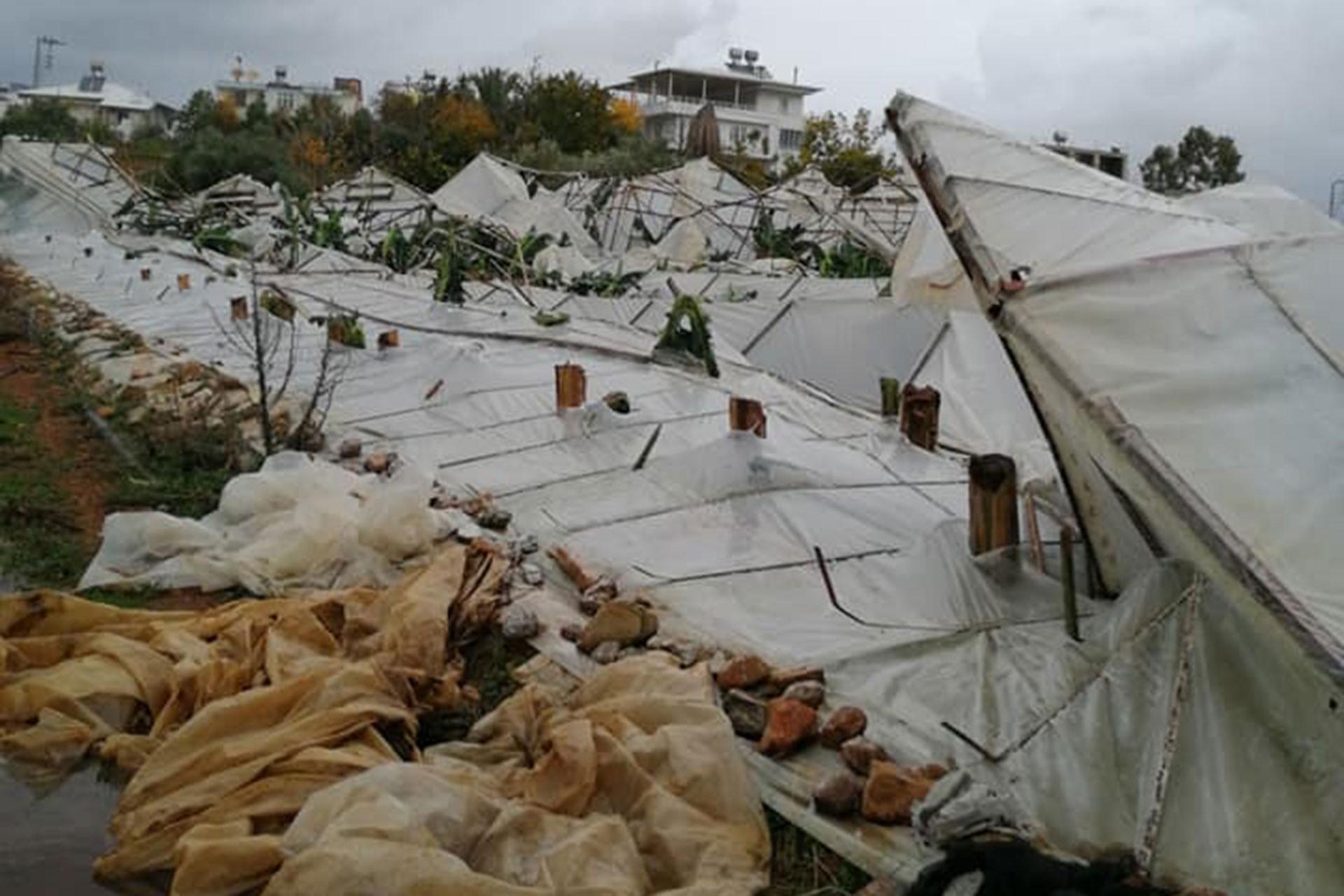 Mersin'de yıkılan seralar