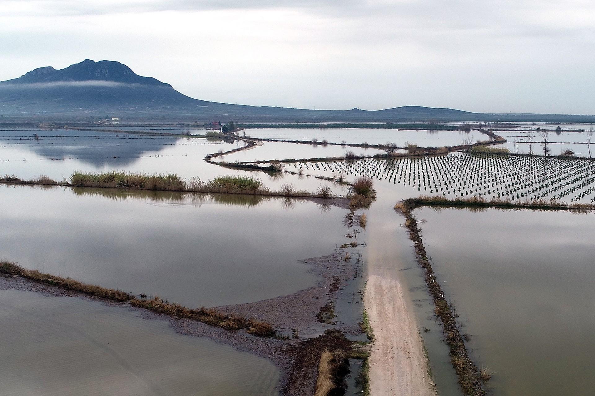 Adana'da sular altında kalan tarlalar